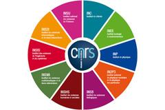 schéma de la nouvelle organisation et fonctionnement CNRS