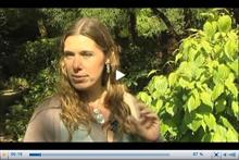 Anne PEYROCHE, Prix de la jeune femme scientifique 2010