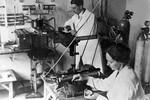 Journée mondiale des femmes de science : le partenariat pour le prix Irène Joliot-Curie renforcé