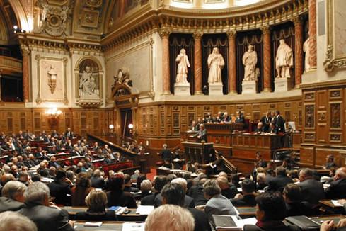 Sénat : adoption de la proposition de loi sur l'encadrement des stages