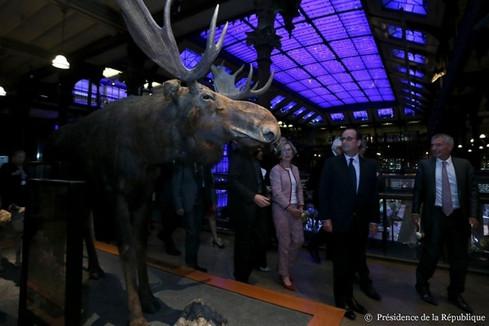 Inauguration des 20 ans de la Grande galerie de l'Évolution