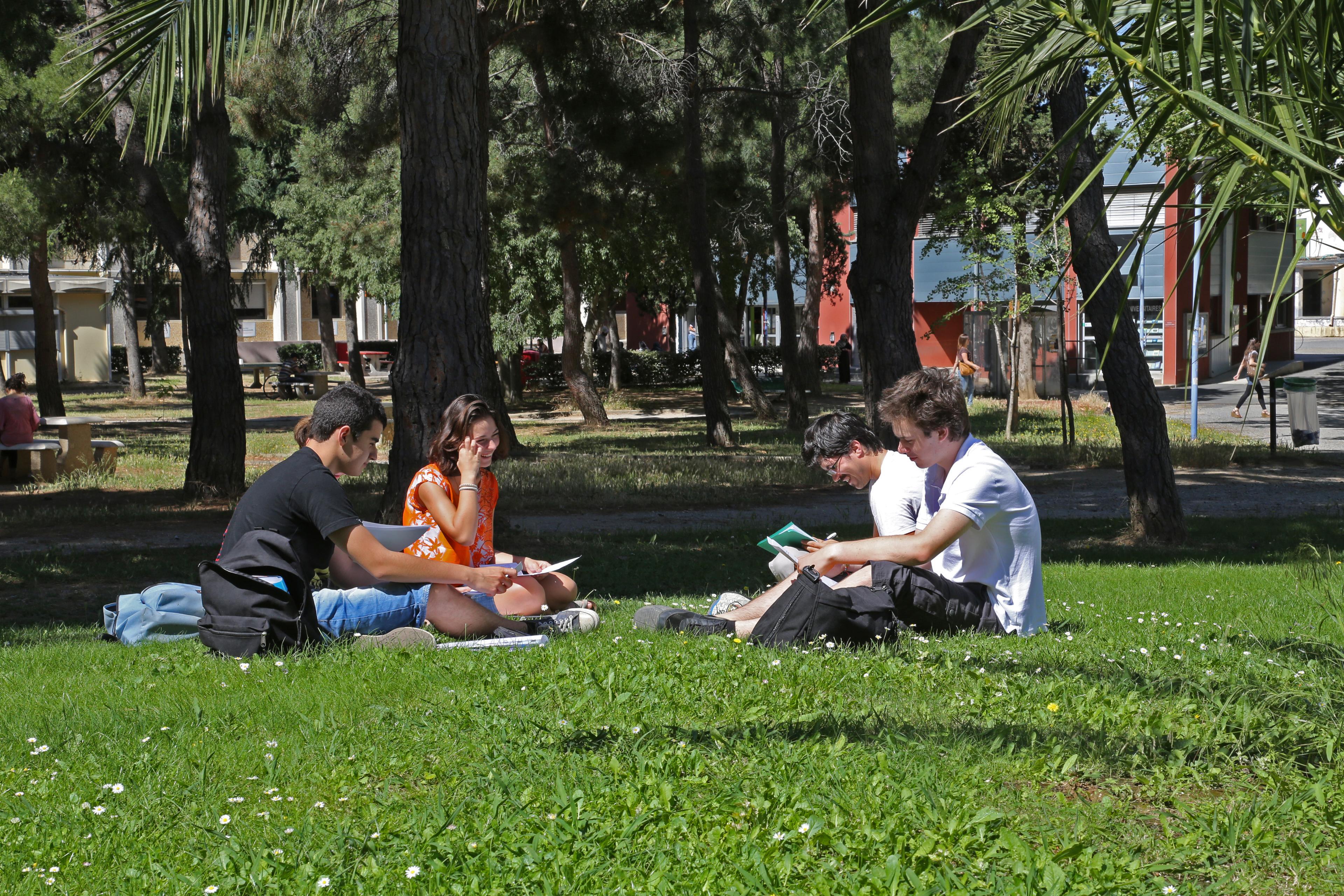 Mieux accompagner les étudiants titulaires d'une licence qui ne poursuivent pas leurs études