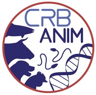 CRBAnim logo