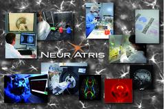 Neuratris