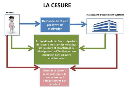 Procedure Type De Demande De Cesure Ministere De L