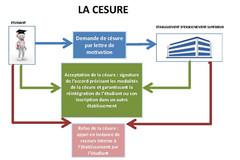Schéma décrivant la procédure type de demande de césur