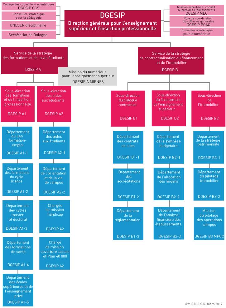Organigramme de la DGESIP