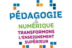 Pédagogie et numérique