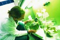 Elaboration du plan Agriculture - Innovation 2025