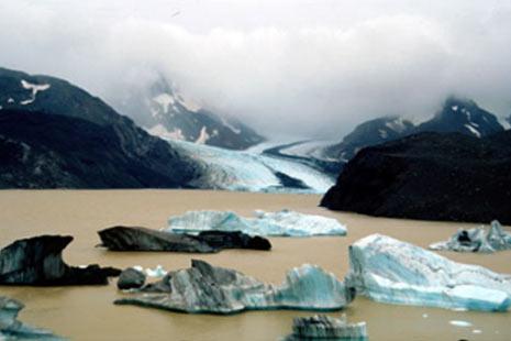 © CNRS. Photothèque, Yves Frenot, Glacier Arago