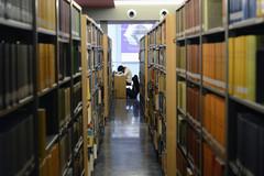 Étudiant à la bibliothèque universitaire