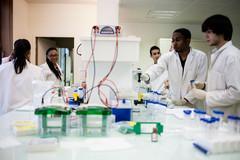 Étudiants dans un laboratoire