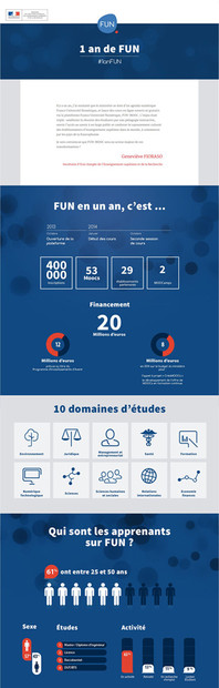 Infographie - Tumblr 1 an de FUN