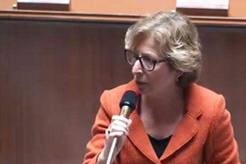 Loi E.S.R. : réponse de Geneviève Fioraso au député Vincent Feltesse