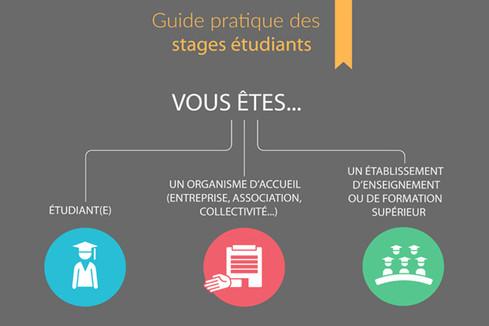 Mise en ligne du guide interactif des stages étudiants