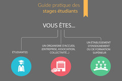 Guide pratique des stages étudiants