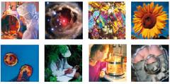 brochure-innovation-recherche.jpg
