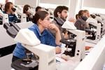 Installation du comité de pilotage de la mission relative à la recertification des compétences des médecins