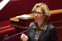 Geneviève Fioraso au Sénat