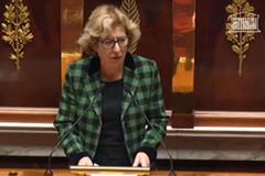 Geneviève Fioraso à l'Assemblée nationale