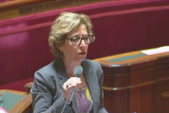 Question de Geneviève Fioraso au Sénat