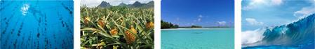 Pôle d'innovation Tahiti Fa'ahotu (Polynésie)
