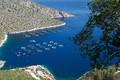 Pôles de compétitivité en région Corse