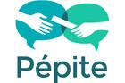 pepite-sanstexte-600-400