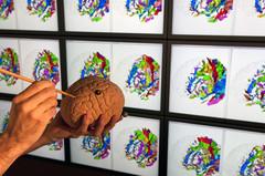 Recherches sur le cerveau