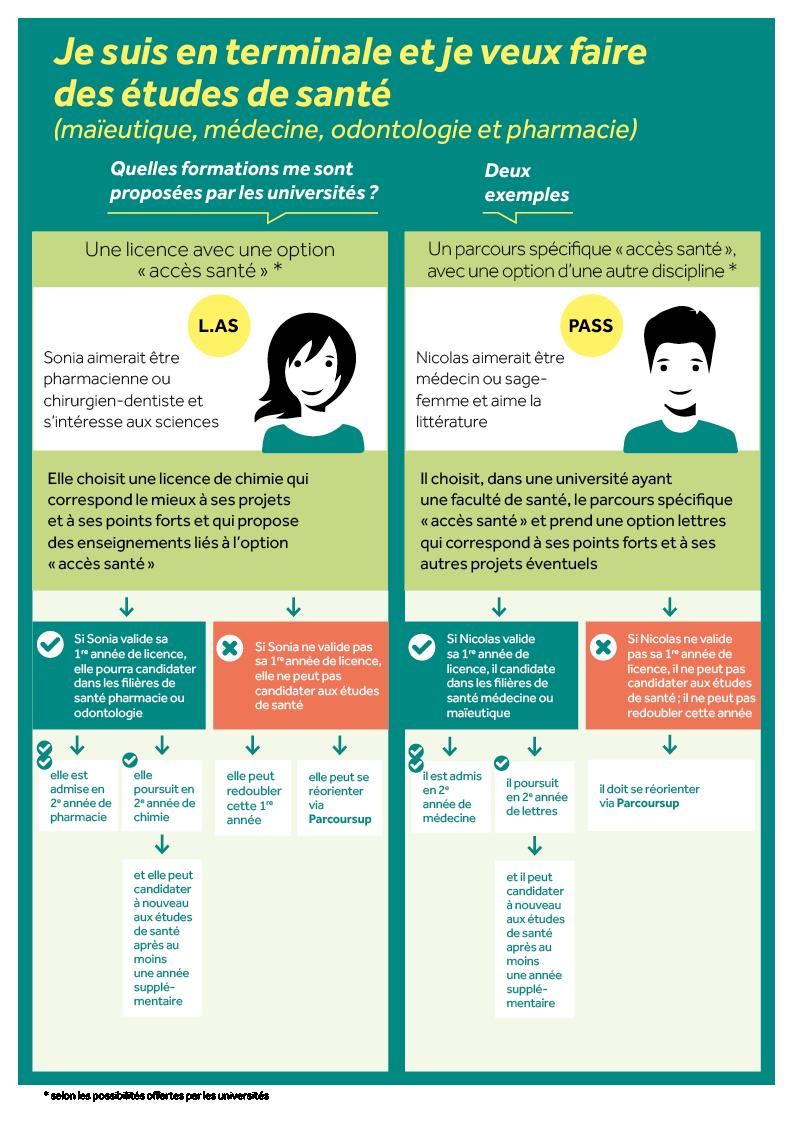 infographie 2 études de santé