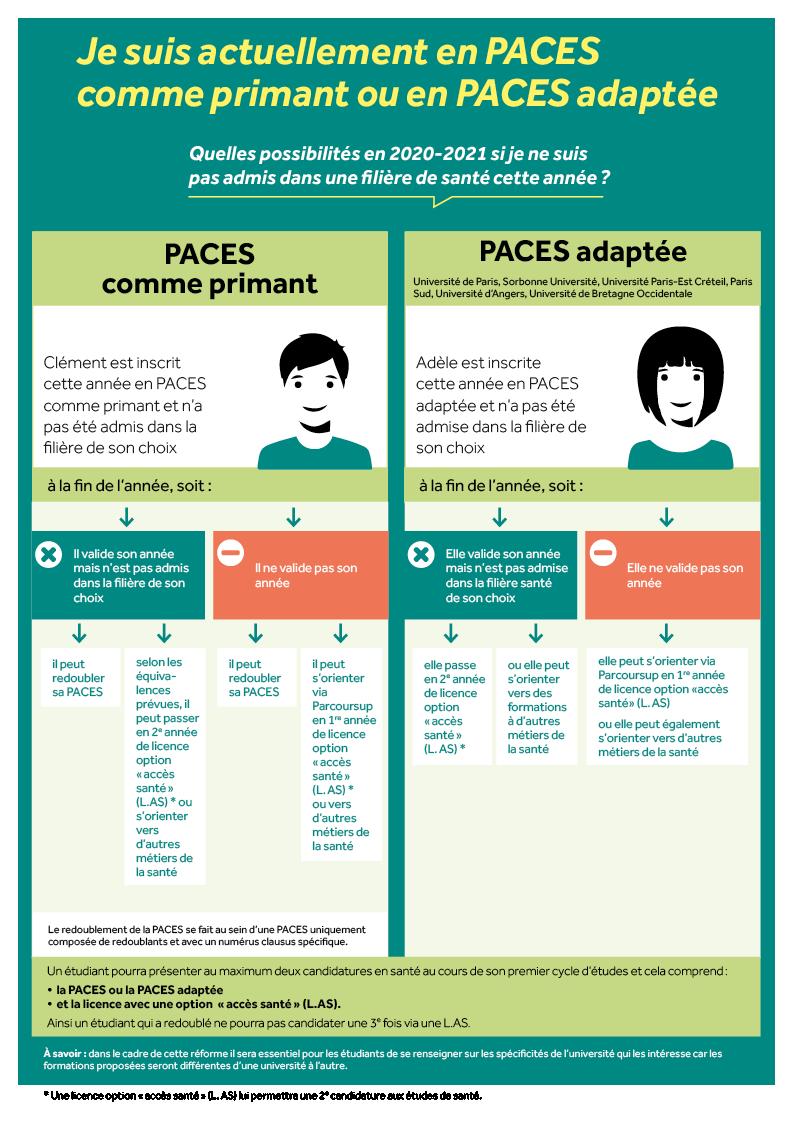 infographie 3 études de santé