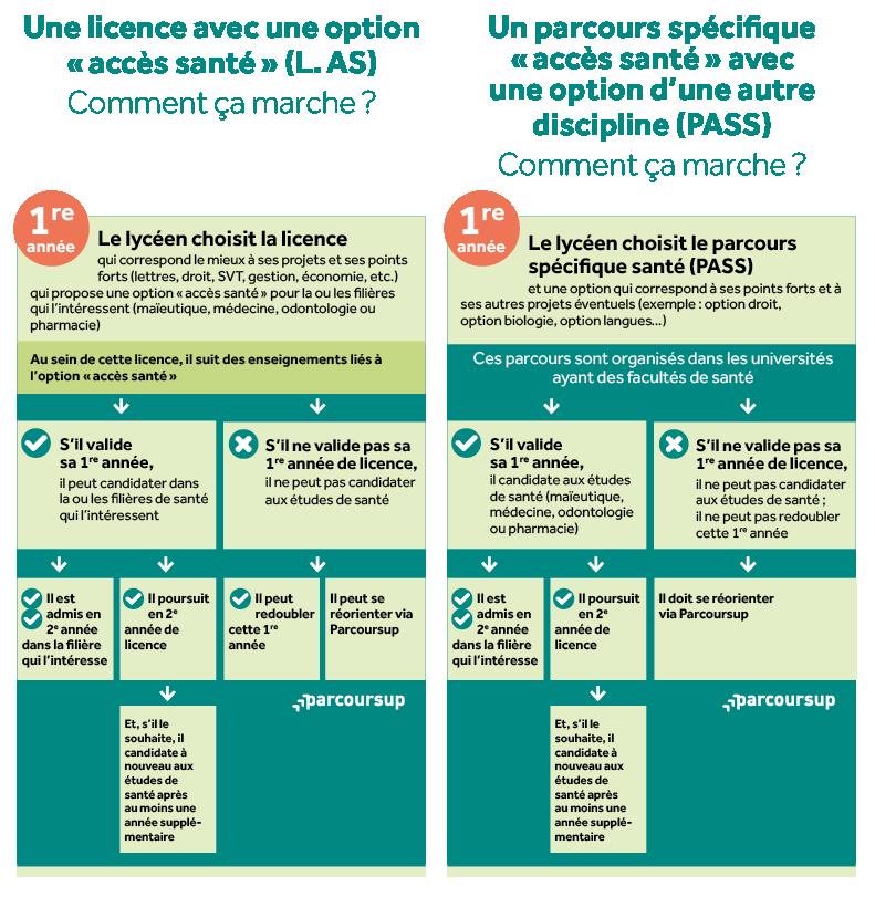 infographie 1 études de santé