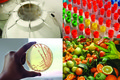 Ressources Agronomiques pour la Recherche-RARe