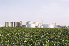 Site de Téréos à Artenay - projet innovant de biocarburant