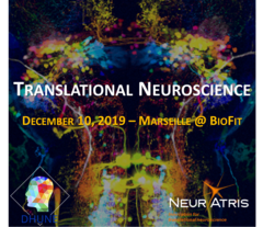 Transnational neurosciences