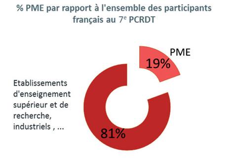 % P.M.E. par rapport à l'ensemble des participants français au 7e P.C.R.D.T.