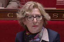 Voir la vidéo : ERASMUS PLUS :  G.Fioraso répond à A-C.Lang