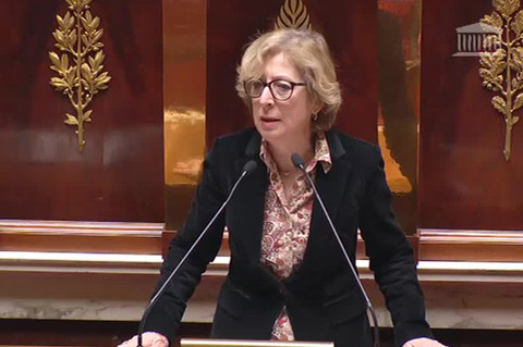 Geneviève Fioraso répond à Ary Chalus